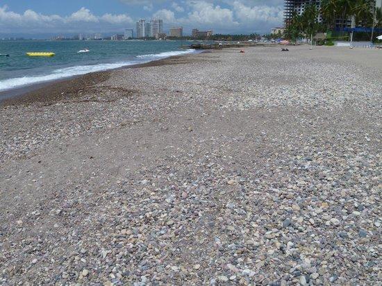 Sheraton Buganvilias Resort & Convention Center: Rocky beach