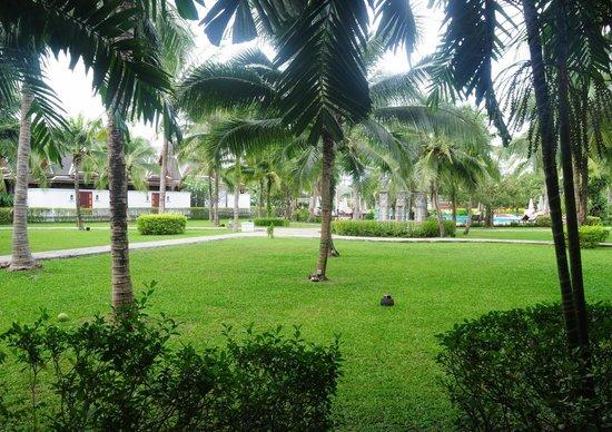 Sofitel Krabi Phokeethra Golf & Spa Resort: The lawns