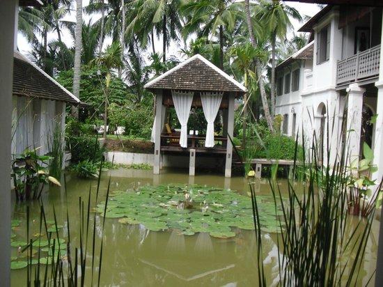 Satri House : The Pond