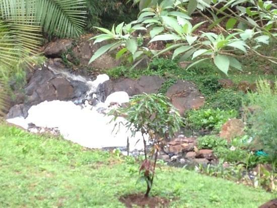 """Eden Gardens: cascata con schiuma scarichi di fogna in giardino! non portateci i bambini in questo """" paradiso"""""""