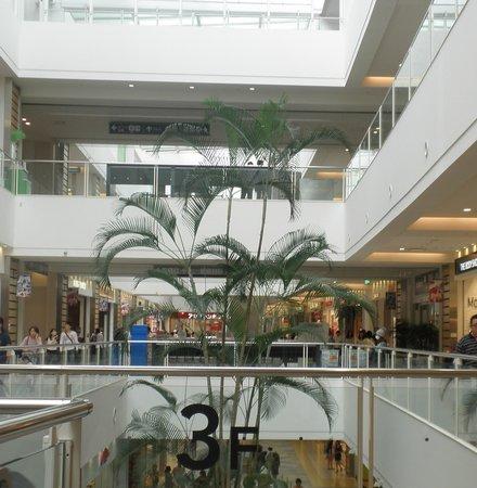 Lazona Kawasaki Plaza: 3階までの高い木
