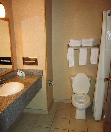 Fredericksburg Hill Country Hotel: bathroom