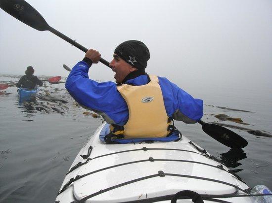 Discovery Sea Kayaks : ahhhhh