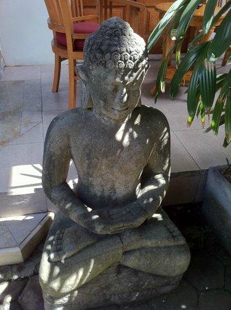 Puri Dukuh Accommodation : Garden