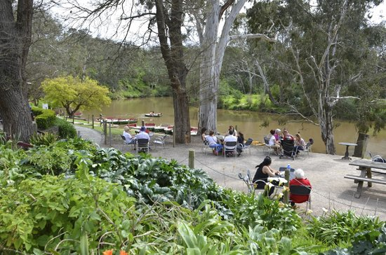 Studley Park Boathouse Cafe: Picnic tables on the river side