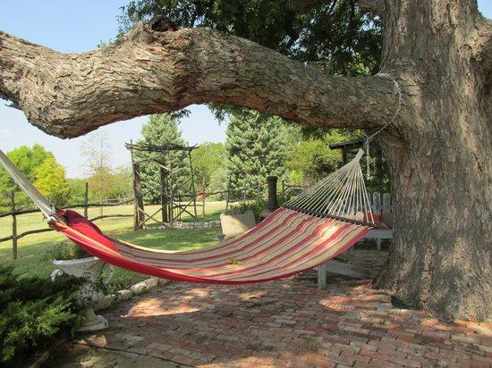 Winding Ridge Bed and Breakfast: Hammock