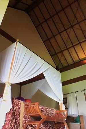 Junjungan Ubud Hotel and Spa: Studio High Ceiling