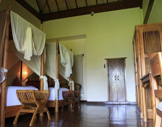 Junjungan Ubud Hotel and Spa: Awan twin bed room