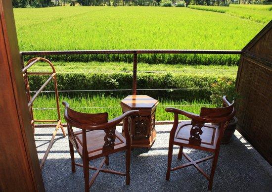 Junjungan Ubud Hotel and Spa: View from sawah balcony