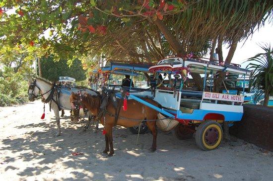 Villa Karang Hotel and Spa : i calessini di Gili