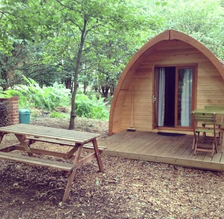West Stow Pods: Outside view of Pod