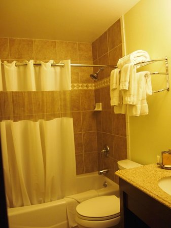 Mammoth Creek Inn: Baño