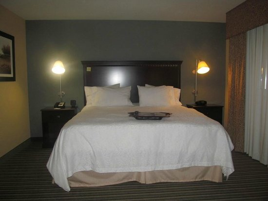 Hampton Inn & Suites Moreno Valley : King bed