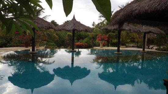 Medana Resort Lombok : PISCINE