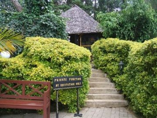 Ikweta Country Inn: Walkway to Makuti Room