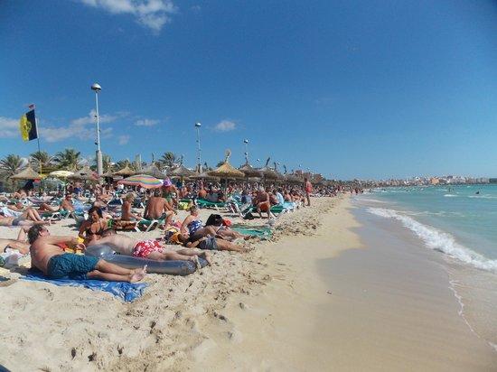 Playa de Palma El Arenal : daytime photo of the beach