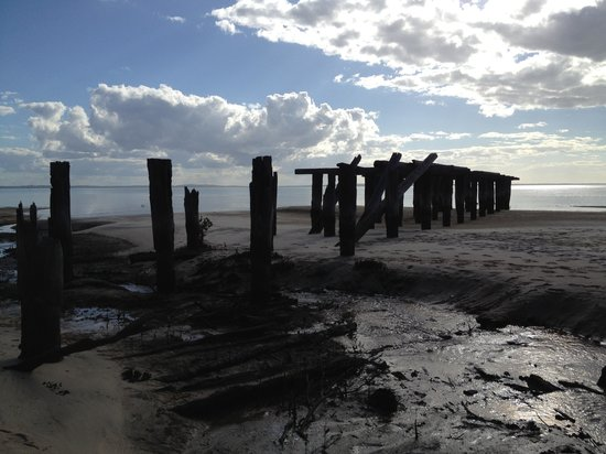 Fraser Experience Tours: Long forgotten wharf from logging days