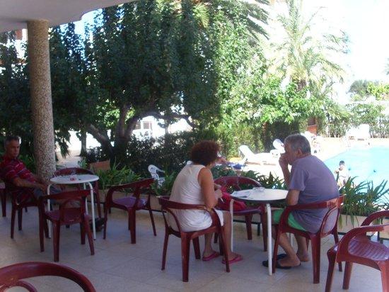 Hotel Los Robles : terraza