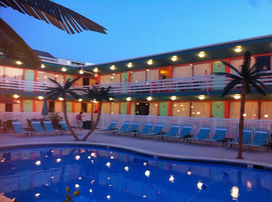 Dolphin Inn : Nice!!
