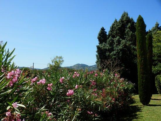 Antico Casale Venturi B&B: beautiful garden