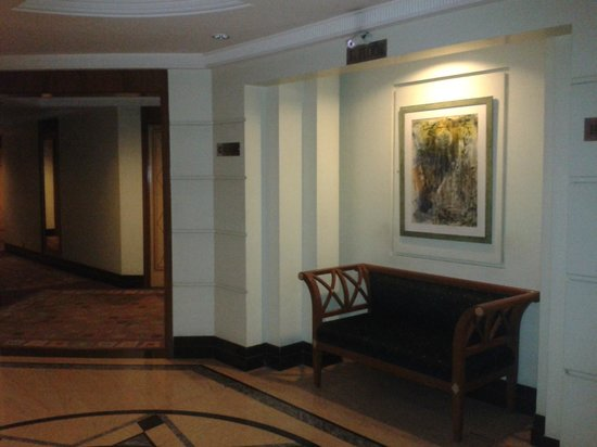 Hotel Ritz Inn: Elegant spaces