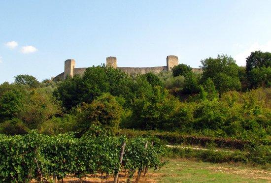 Walls of Monteriggioni: Monteriggioni da lontano