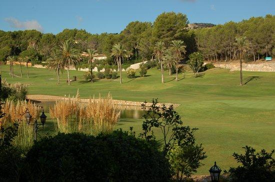 Sheraton Mallorca Arabella Golf Hotel: Golf course adjoining hotel