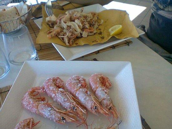 Bagno Conchiglia Castiglioncello : Castiglioncello lungomare colombo bild von ristorante pizzeria