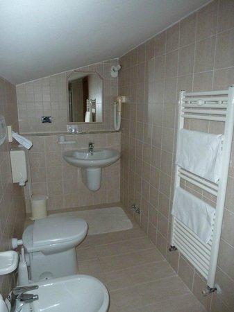 Hotel Campiglione: bagno
