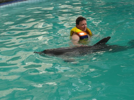 Melka Excelsior Dolphin & Wildlife Resort: swim by