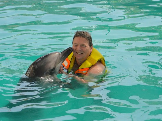 Melka Excelsior Dolphin & Wildlife Resort: more kisses