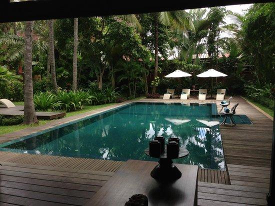 Maison Polanka: I love this pool!