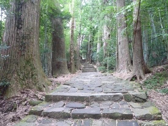 Daimonzaka: 大門坂から那智大社へ行く道中