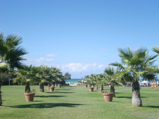 Acacia Resort Parco dei Leoni: JARDIN AVEC ACCES PLAGE