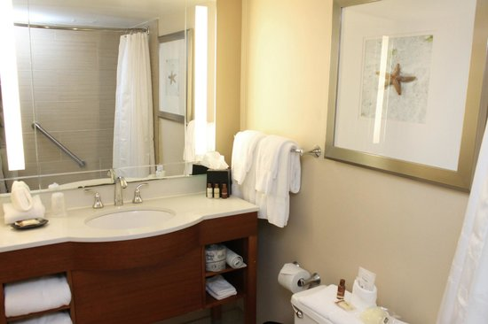 Sheraton Suites Tampa Airport Westshore: the bathroom was clean and just the right size