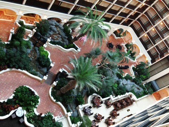 Sheraton Suites Tampa Airport Westshore: The lobby was nice and relaxing