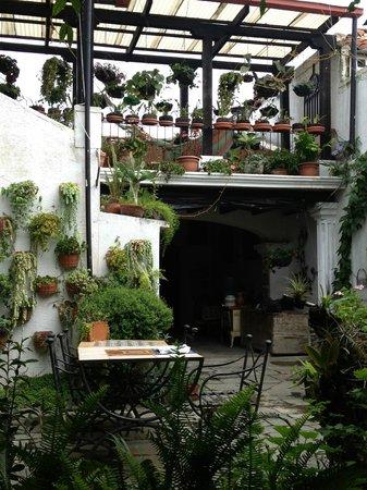 La Villa Serena: Terrace