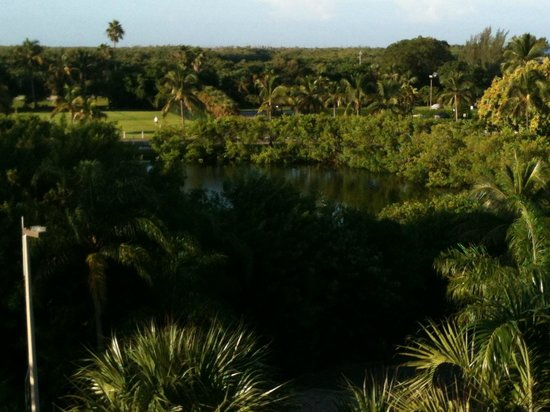 Lovers Key Resort : From our balcony facing west