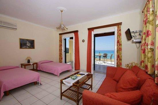 Alexandra Natalia Aparthotel: Type B living room