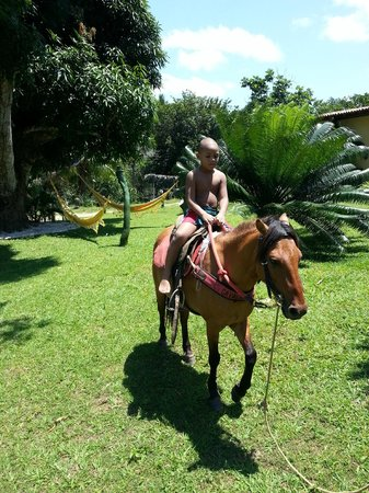 Hotel Fazenda Agua da Prata : ..