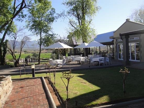 Surval Boutique Olive Estate: the country view