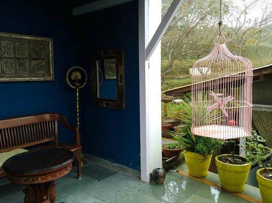 Te Aroha Dhanachuli: Eclectic antiques