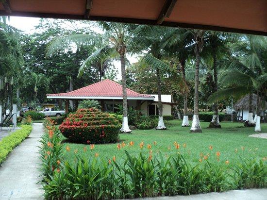 Tangeri Hotel: zonas verdes