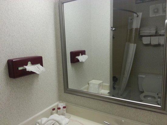 Ramada Murfreesboro: Bathroom