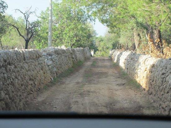 Borgo Alto Country Hotel: la route d'accès