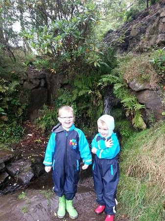 Mugdock Country Park: getting muddy