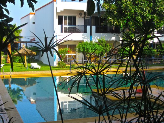 Hotel Al Khaima: the pool from the breakfast terrace