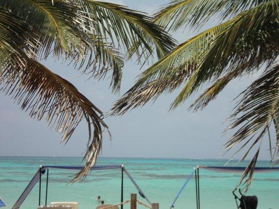 Portobelo Beach: Da entrada do hotel, essa é a vista!