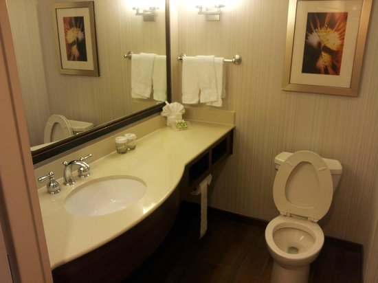 Hilton Garden Inn Raleigh-Durham/Research Triangle Park: My bathroom