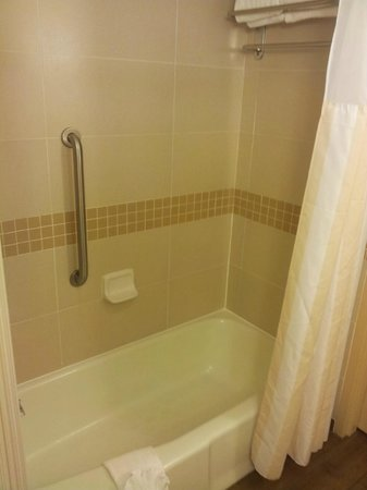 Hilton Garden Inn Raleigh-Durham/Research Triangle Park: Bathtub